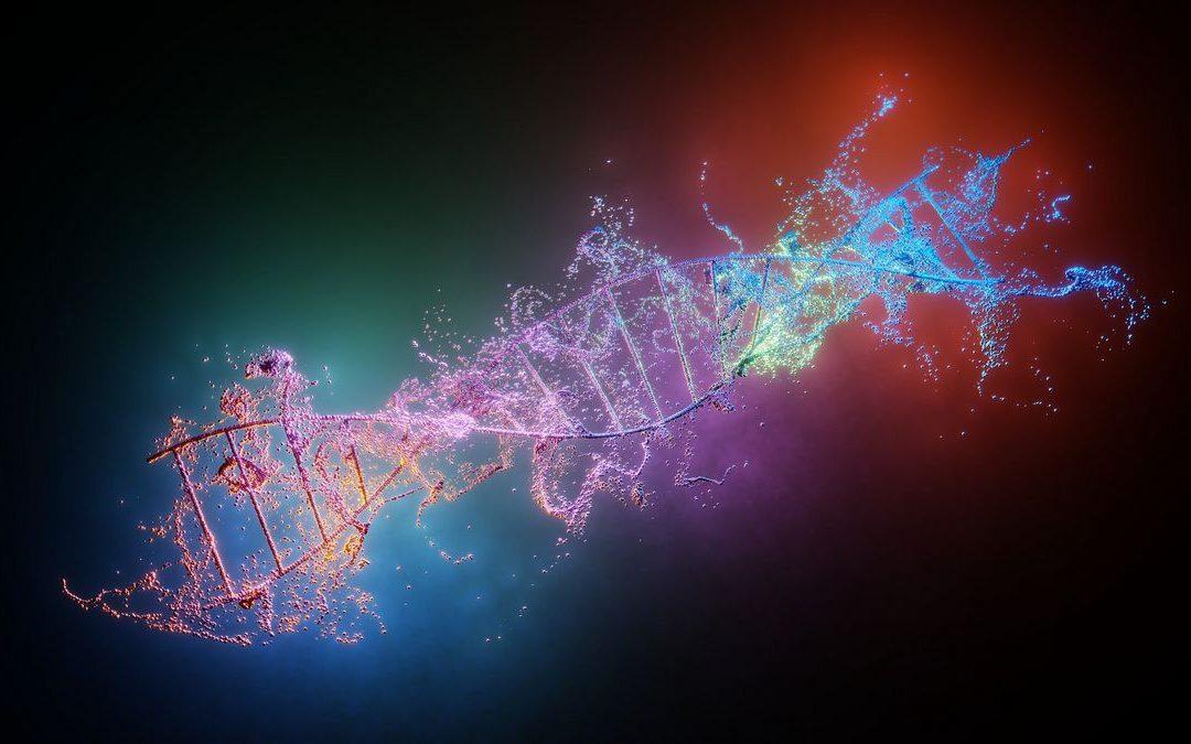 UN MINI-ZODIAQUE DANS L'ADN ?